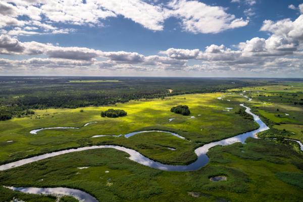 Polska Amazonia, Biebrza i jej zakola, Maciej Nowakowski