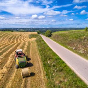 Praca na polu, Maciej Nowakowski