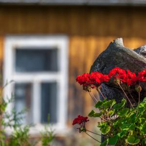 Podlaska chata w Wodziłkach na Suwalszczyźnie, Maciej Nowakowski